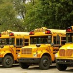 A group of parked school buses